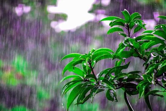 今天,整个聊城都在等雨~